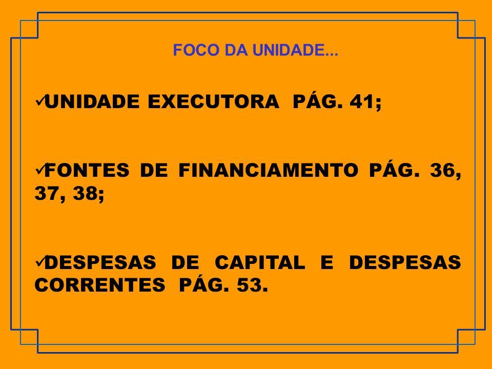 UNIDADE EXECUTORA PÁG. 41;