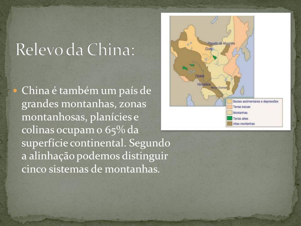 Relevo da China: