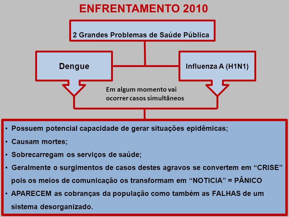 ENFRENTAMENTO 2010 Dengue 2 Grandes Problemas de Saúde Pública