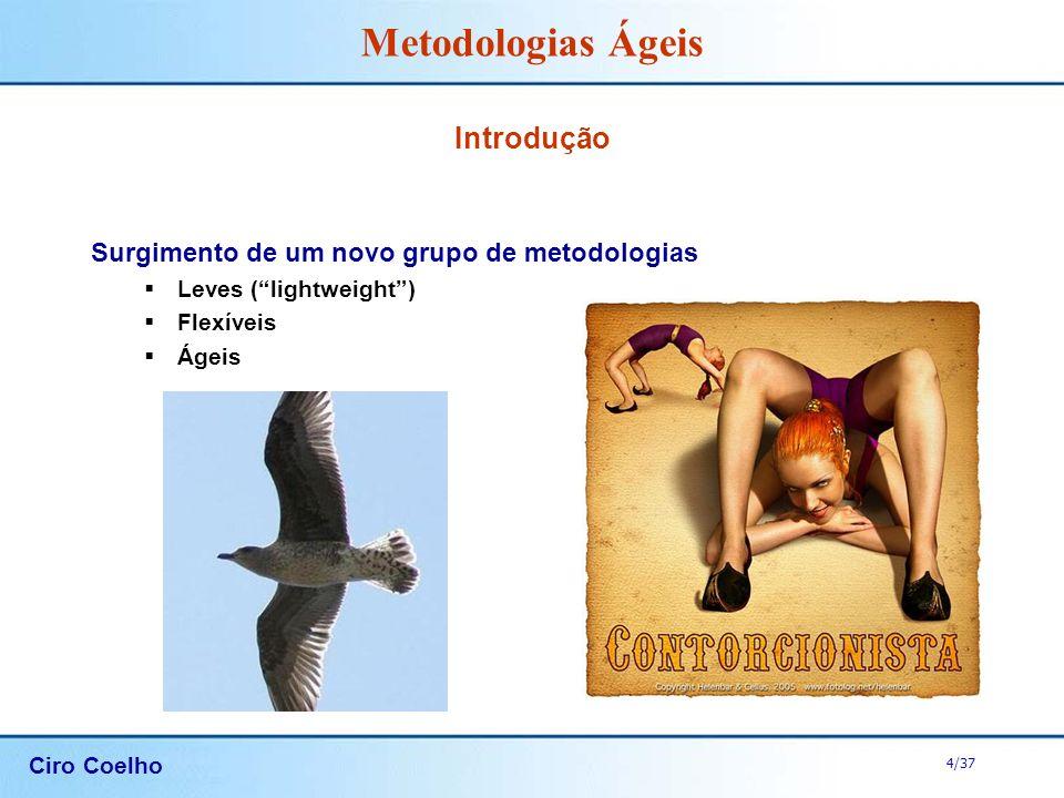 Introdução Surgimento de um novo grupo de metodologias
