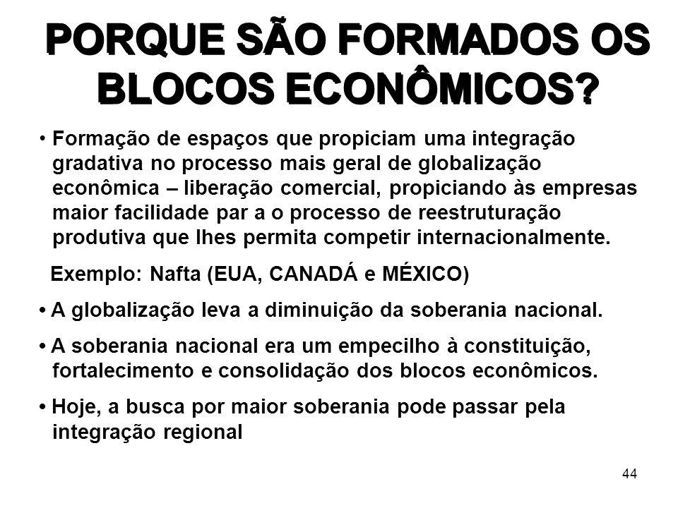 PORQUE SÃO FORMADOS OS BLOCOS ECONÔMICOS