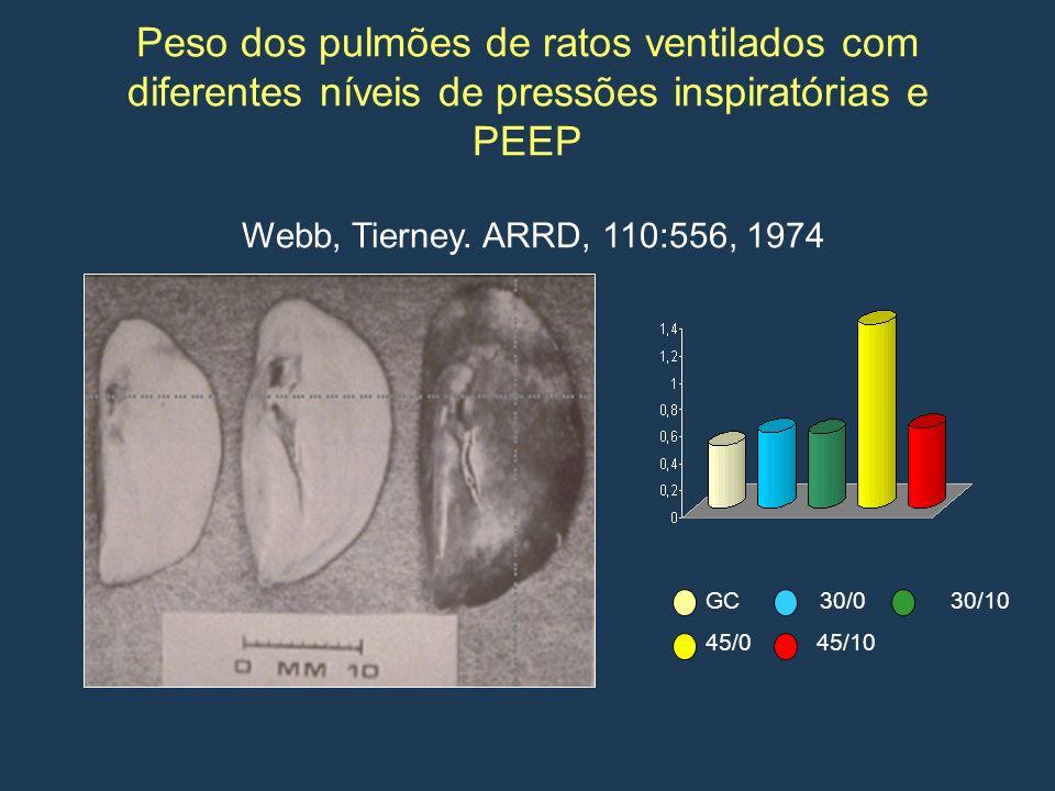 Peso dos pulmões de ratos ventilados com diferentes níveis de pressões inspiratórias e PEEP Webb, Tierney. ARRD, 110:556, 1974
