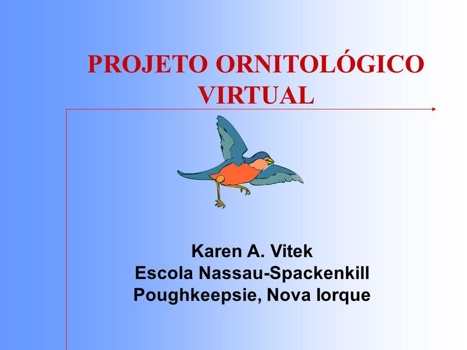 PROJETO ORNITOLÓGICO VIRTUAL