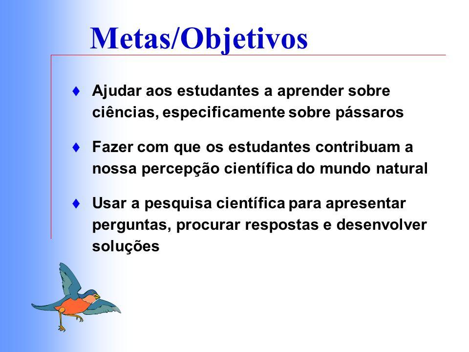 Metas/Objetivos Ajudar aos estudantes a aprender sobre ciências, especificamente sobre pássaros.