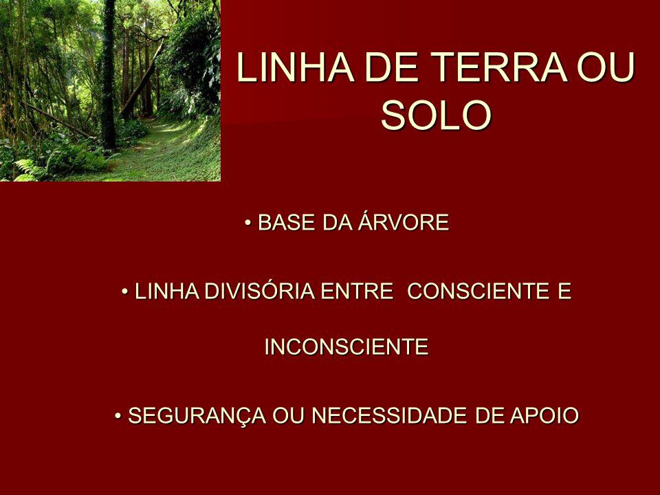 LINHA DE TERRA OU SOLO BASE DA ÁRVORE