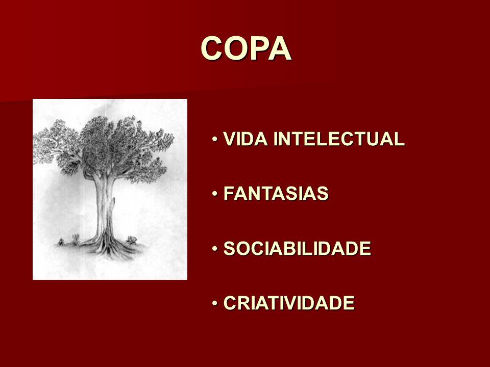 COPA VIDA INTELECTUAL FANTASIAS SOCIABILIDADE CRIATIVIDADE