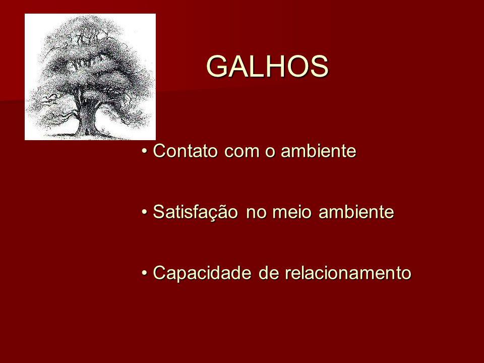 GALHOS Contato com o ambiente Satisfação no meio ambiente