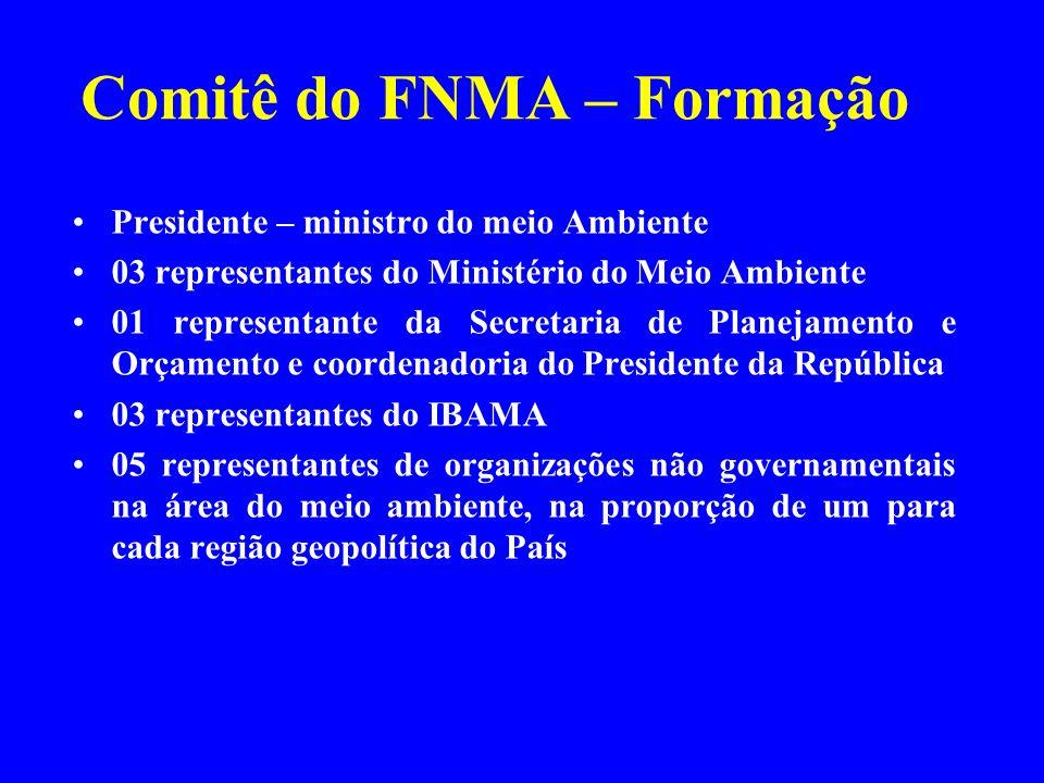 Comitê do FNMA – Formação