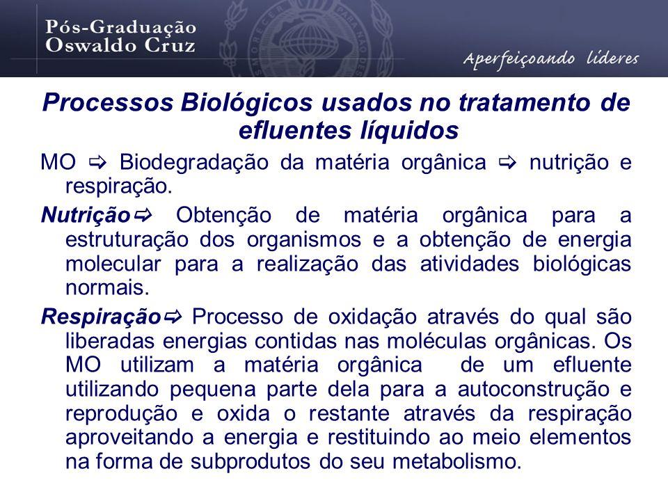Processos Biológicos usados no tratamento de efluentes líquidos