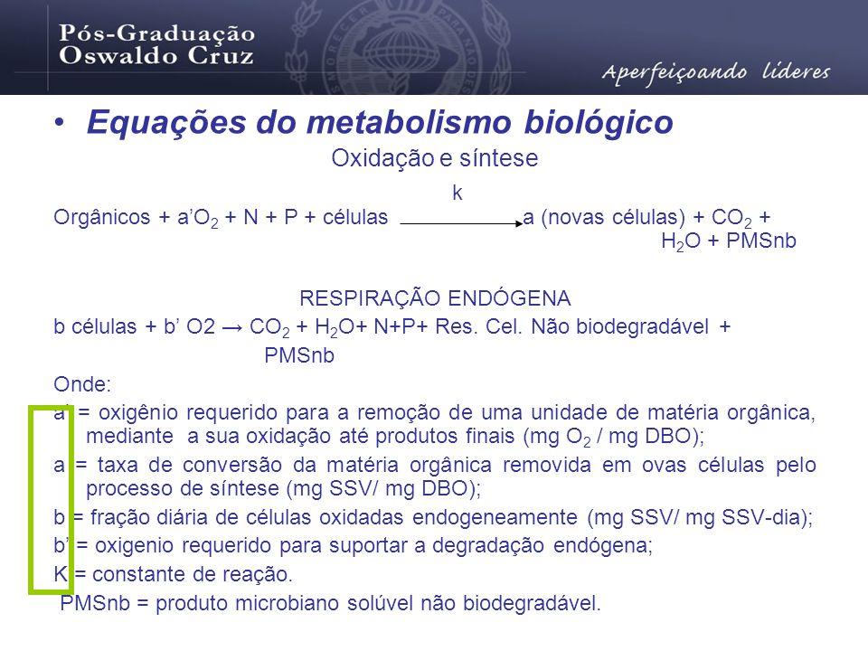 Equações do metabolismo biológico