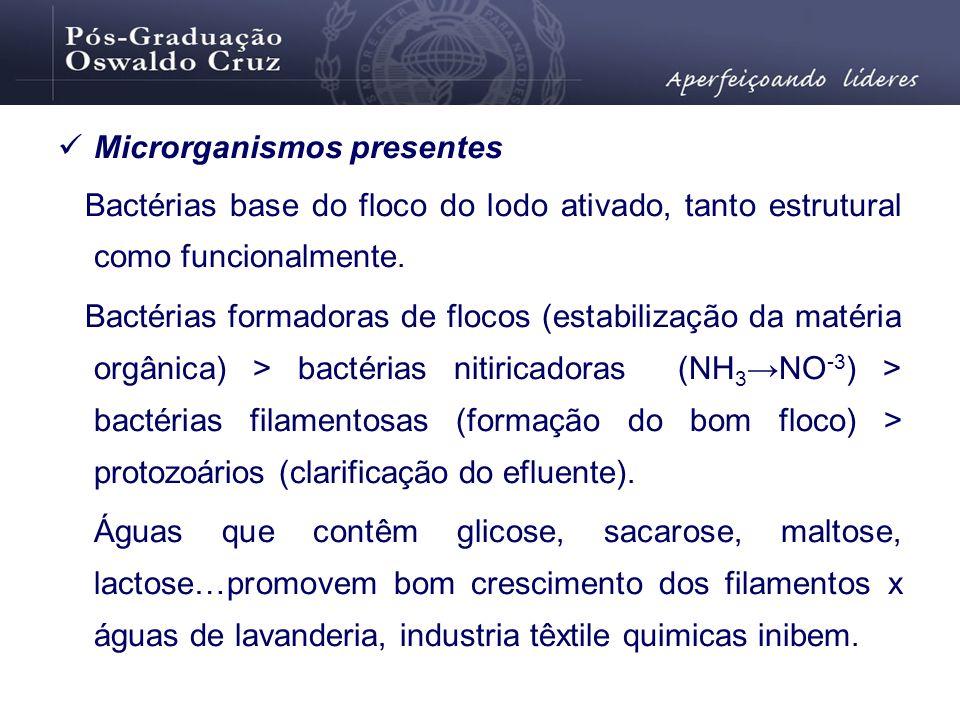Microrganismos presentes