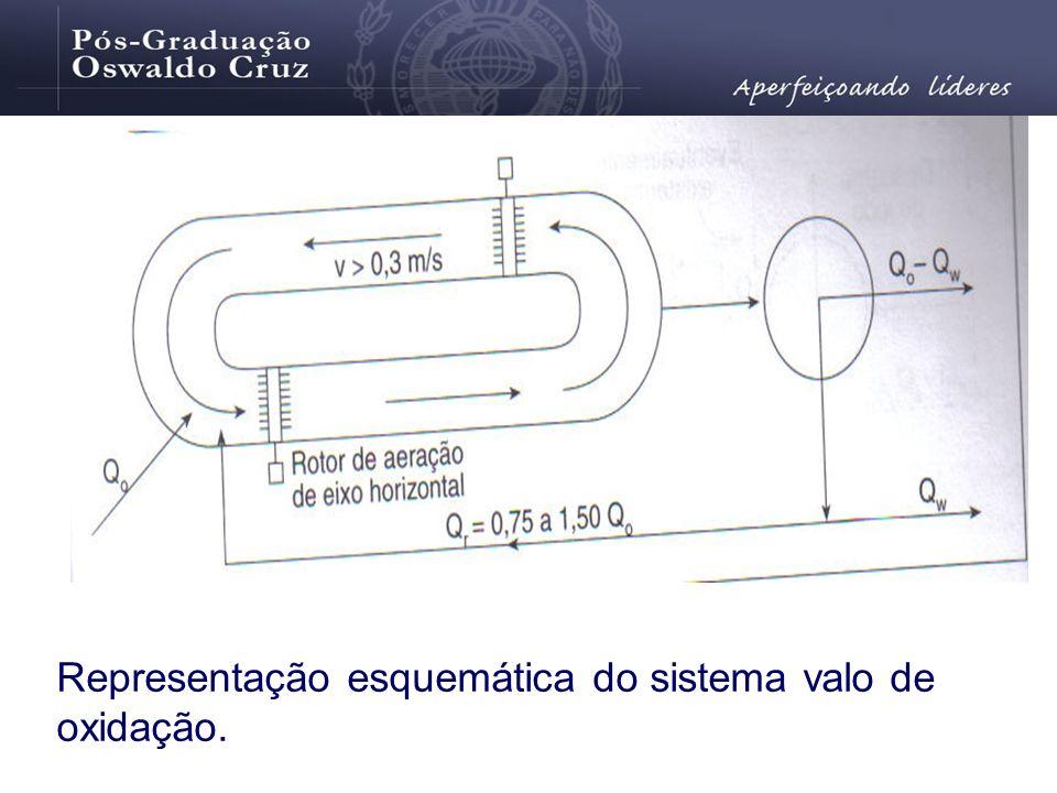 Representação esquemática do sistema valo de oxidação.