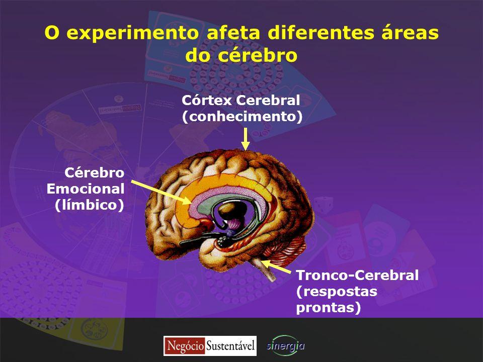 O experimento afeta diferentes áreas do cérebro