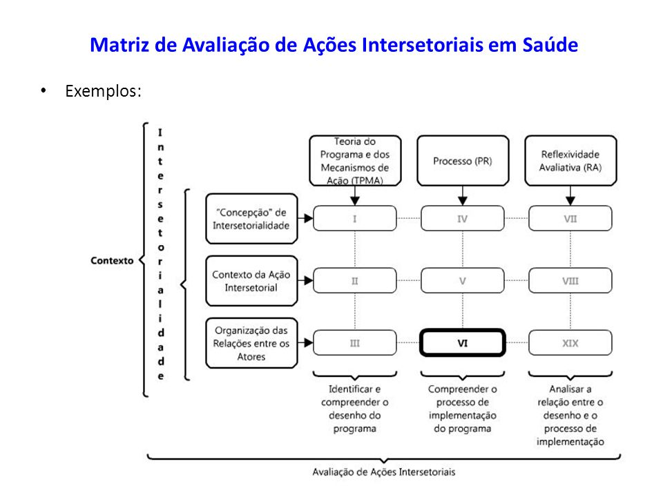Matriz de Avaliação de Ações Intersetoriais em Saúde