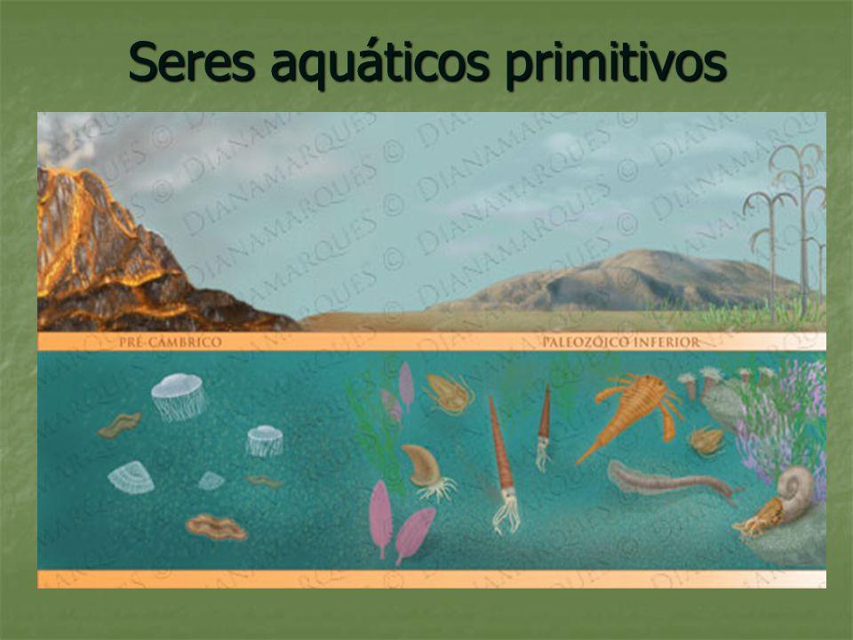 Seres aquáticos primitivos
