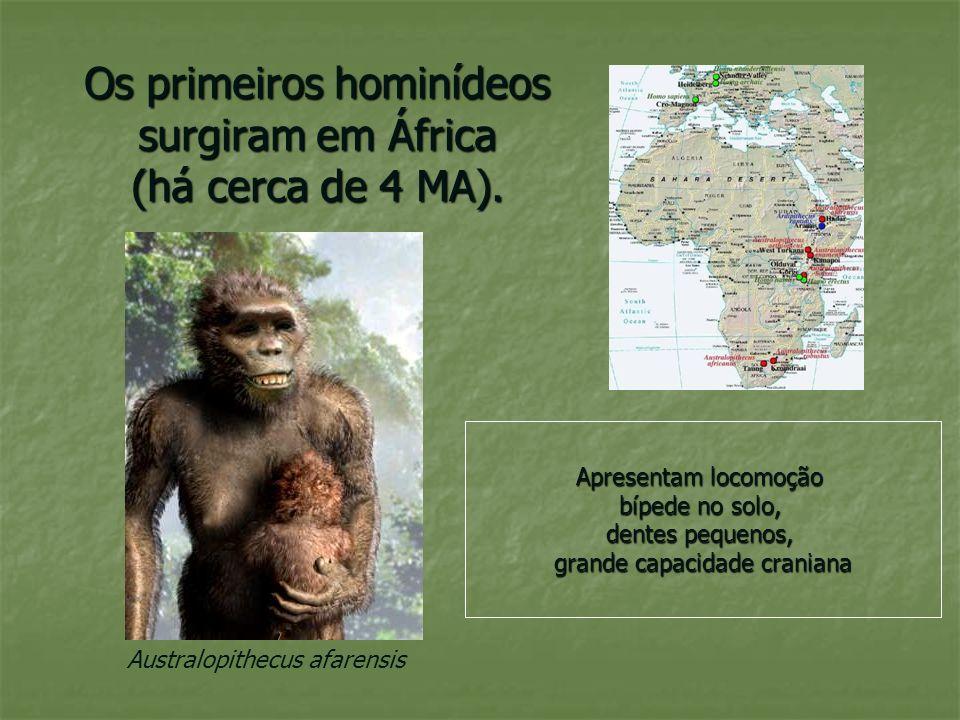 Os primeiros hominídeos surgiram em África (há cerca de 4 MA).
