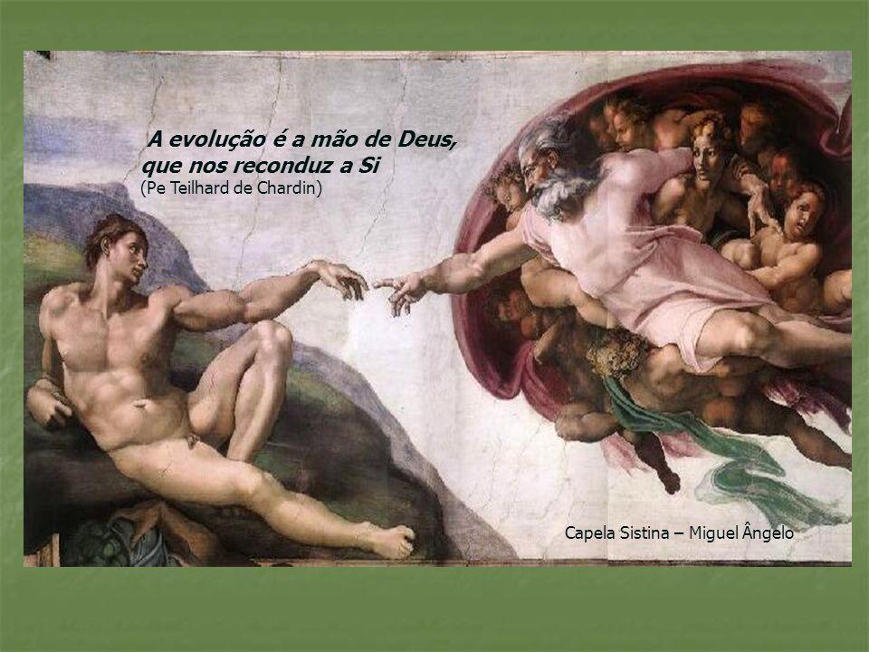 A evolução é a mão de Deus, que nos reconduz a Si