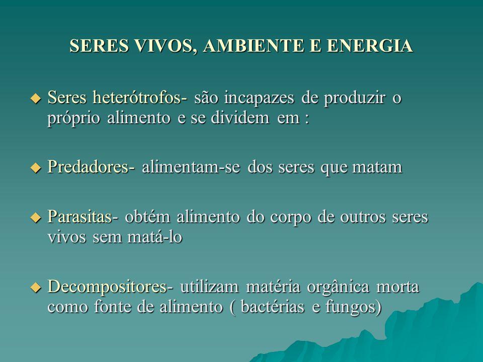 SERES VIVOS, AMBIENTE E ENERGIA