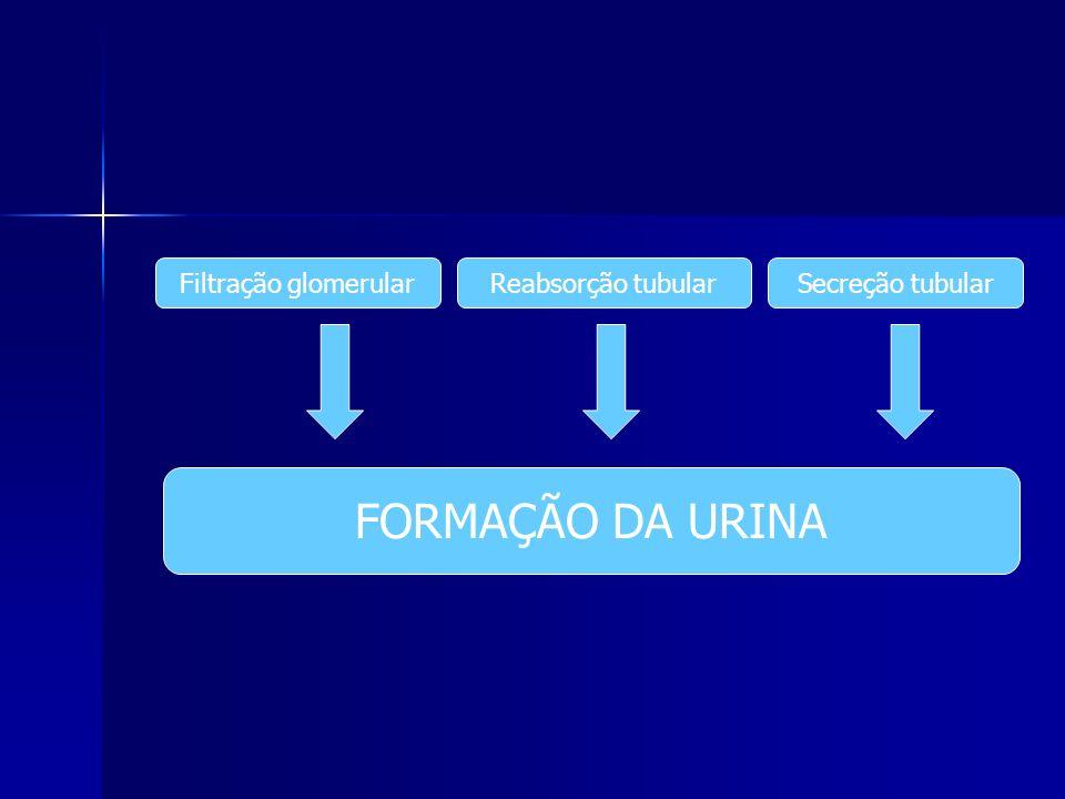 FORMAÇÃO DA URINA Filtração glomerular Reabsorção tubular