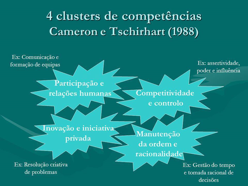4 clusters de competências Cameron e Tschirhart (1988)