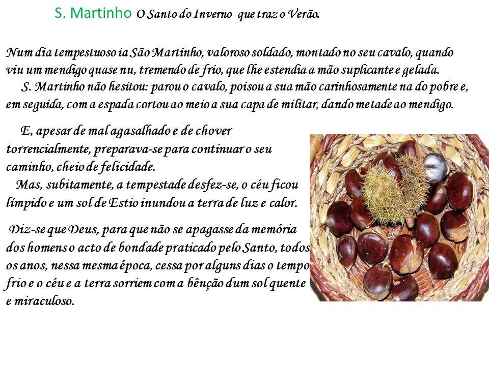 S. Martinho O Santo do Inverno que traz o Verão.