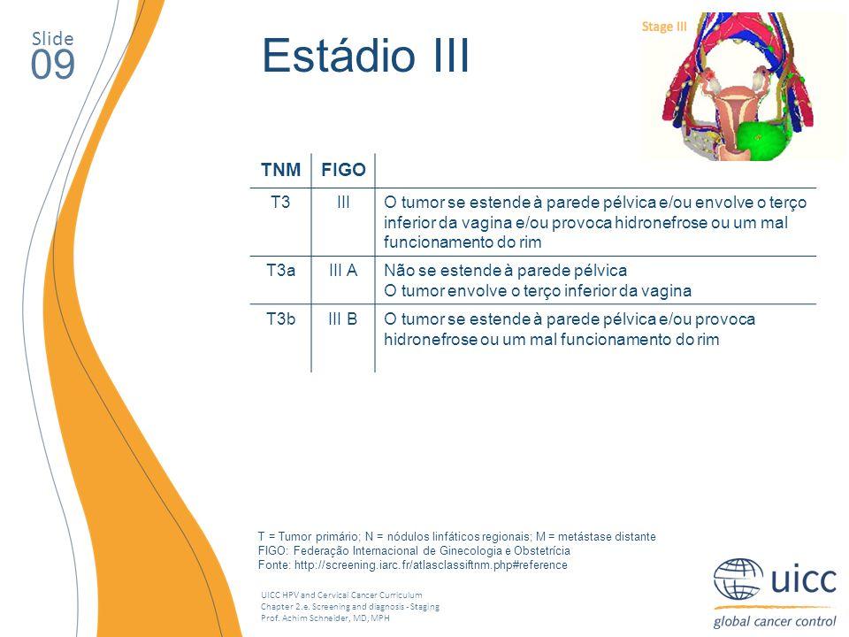 Estádio III 09 Slide TNM FIGO T3 III