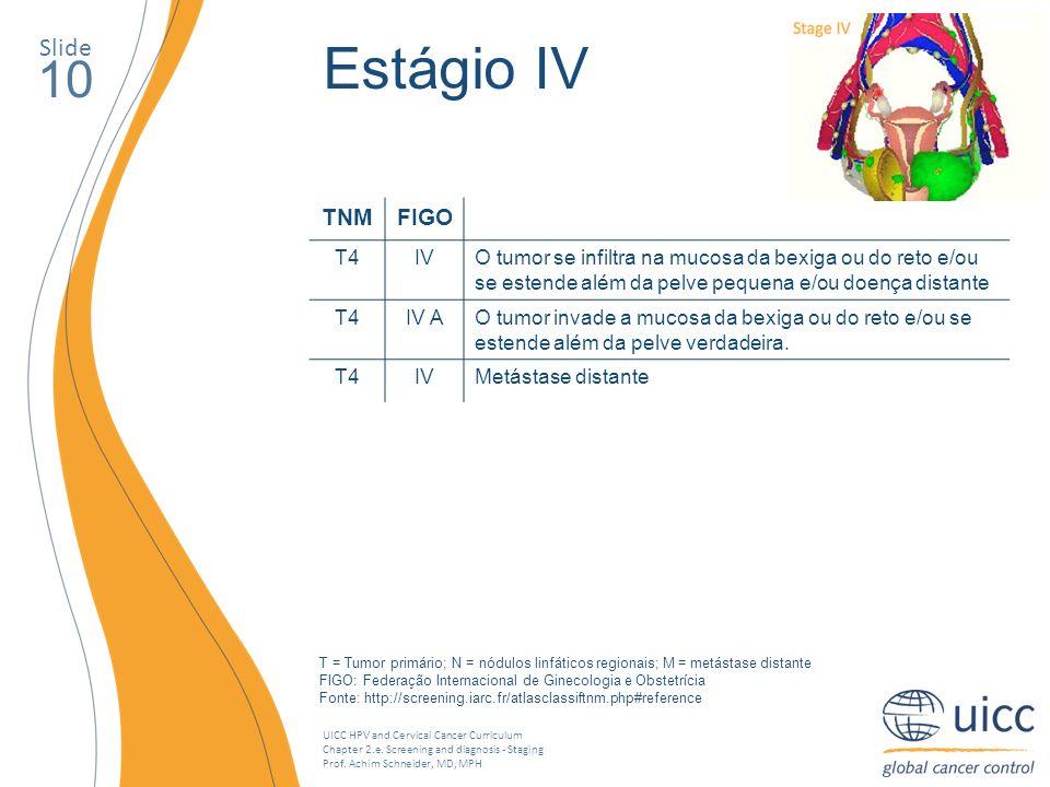 Estágio IV 10 Slide TNM FIGO T4 IV