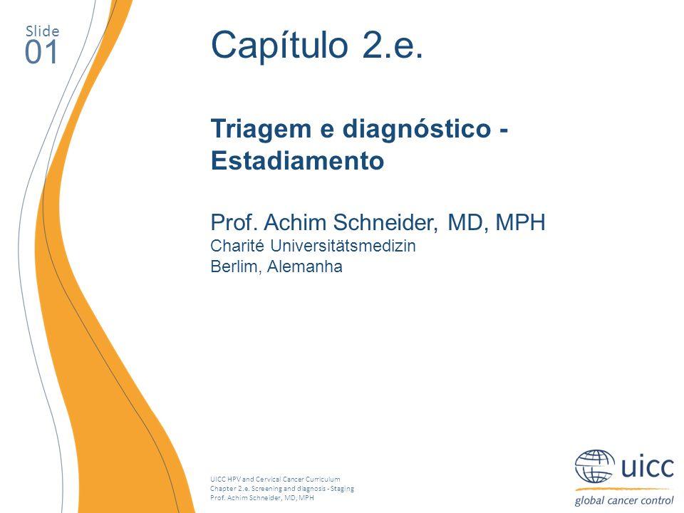 Capítulo 2.e. 01 Triagem e diagnóstico - Estadiamento