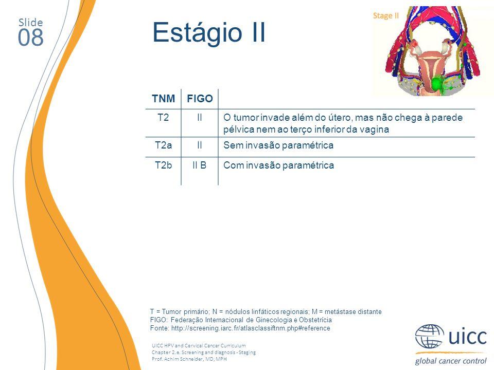 Estágio II 08 Slide TNM FIGO T2 II