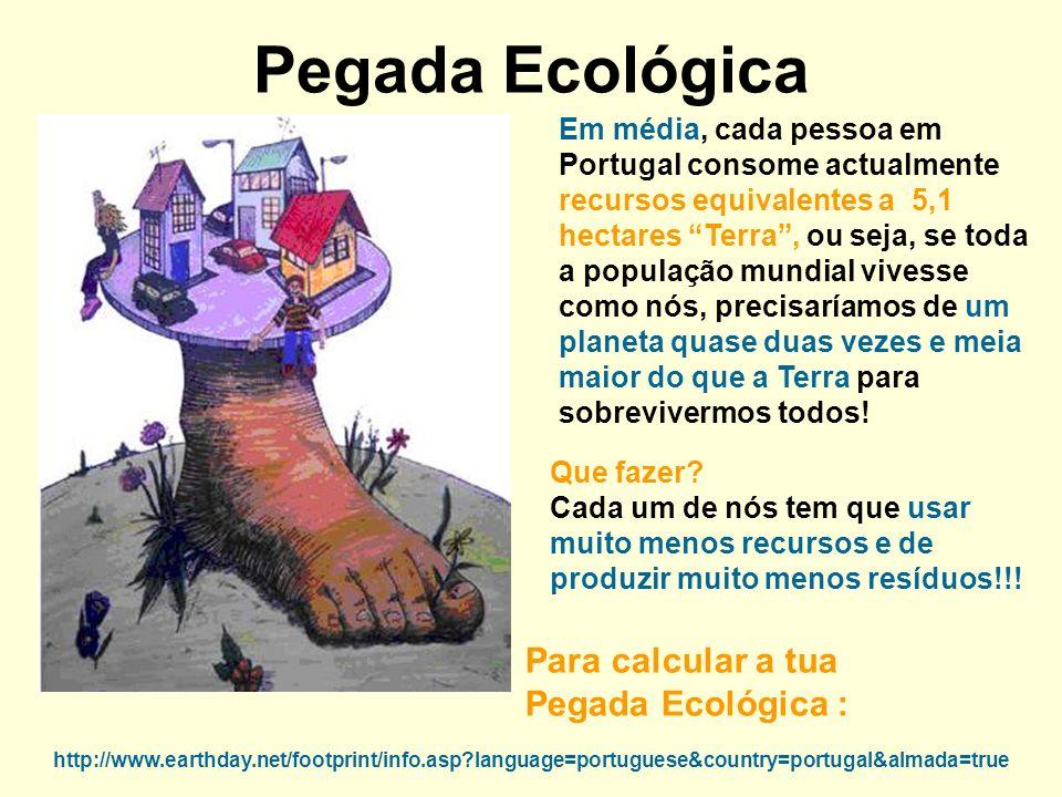 Pegada Ecológica Para calcular a tua Pegada Ecológica :