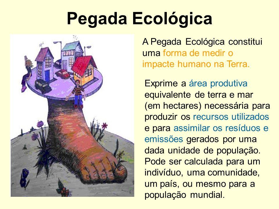 Pegada Ecológica A Pegada Ecológica constitui uma forma de medir o impacte humano na Terra.
