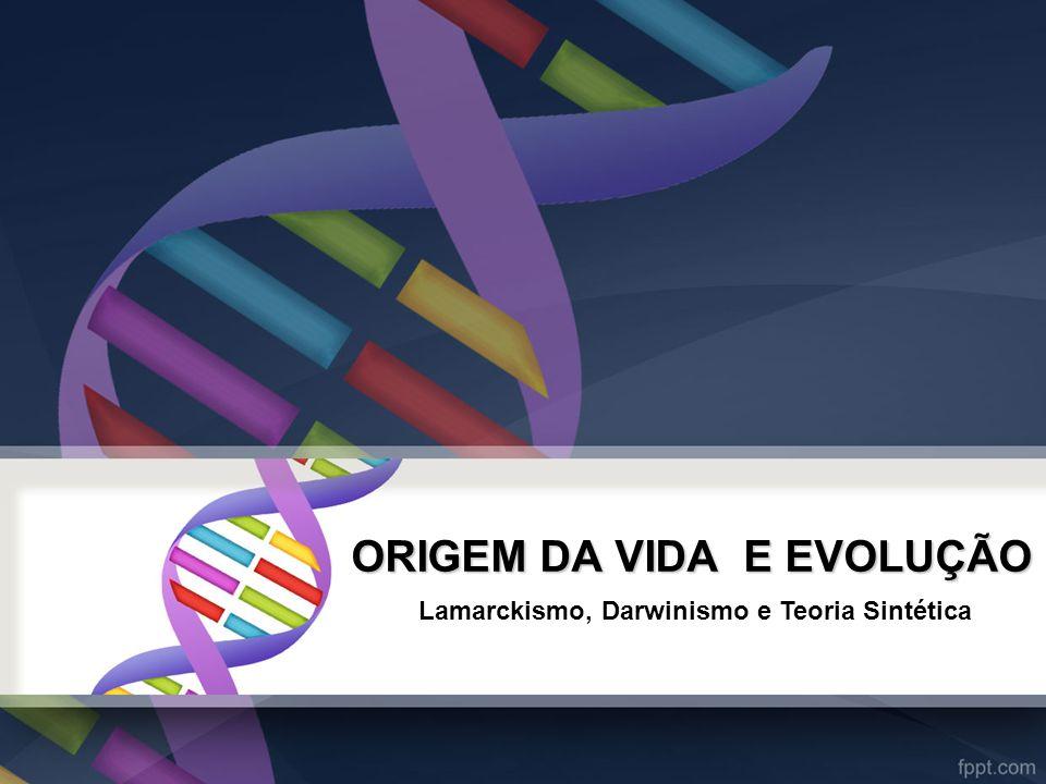 ORIGEM DA VIDA E EVOLUÇÃO
