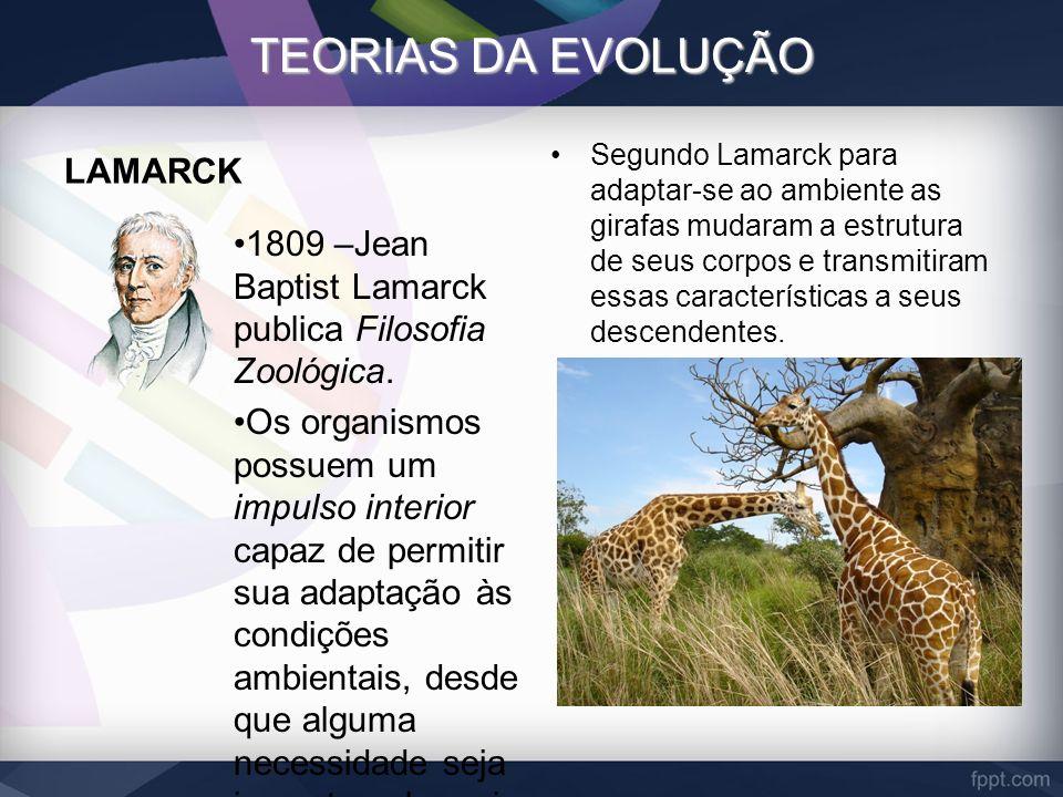 TEORIAS DA EVOLUÇÃO LAMARCK