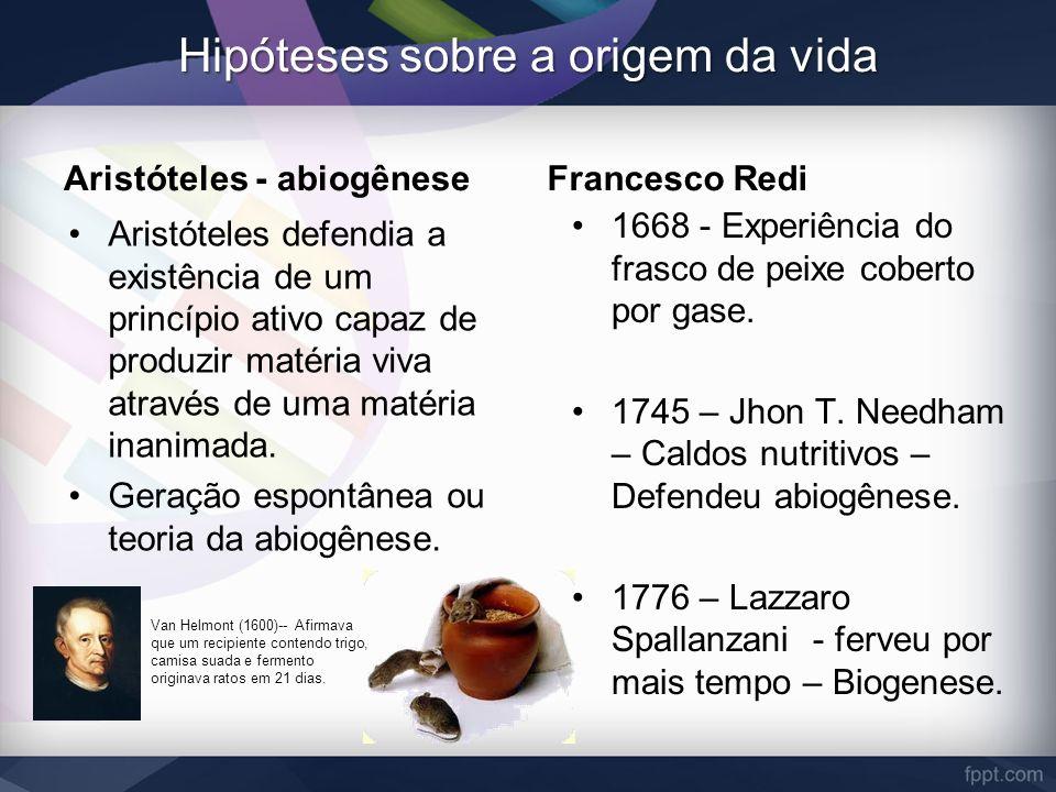 Hipóteses sobre a origem da vida