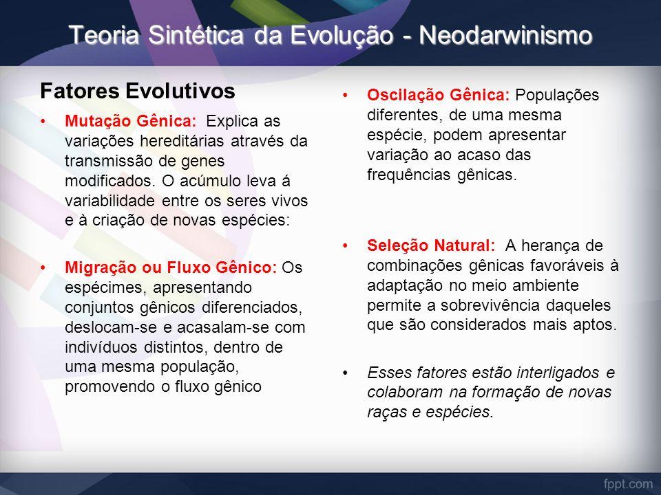 Teoria Sintética da Evolução - Neodarwinismo