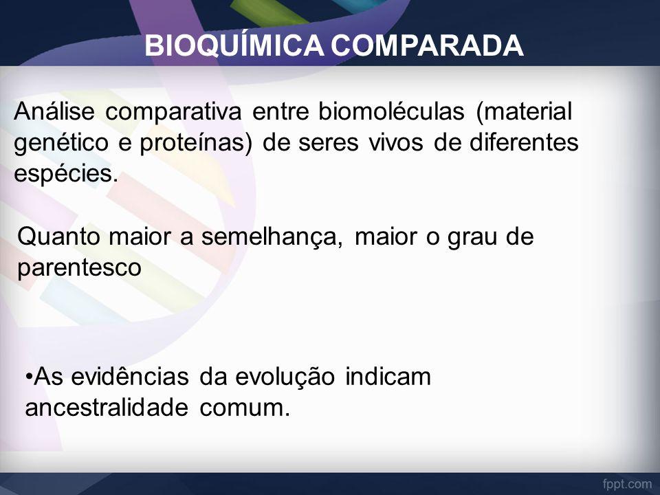 BIOQUÍMICA COMPARADA Análise comparativa entre biomoléculas (material