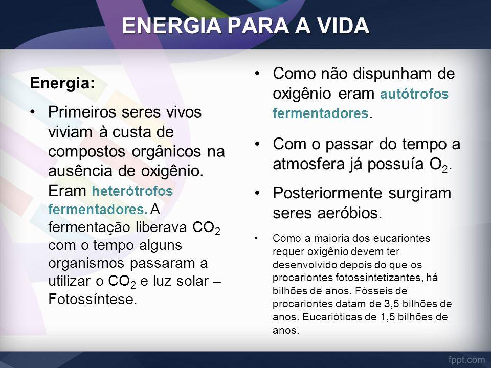 ENERGIA PARA A VIDA Energia: Como não dispunham de oxigênio eram autótrofos fermentadores. Com o passar do tempo a atmosfera já possuía O2.