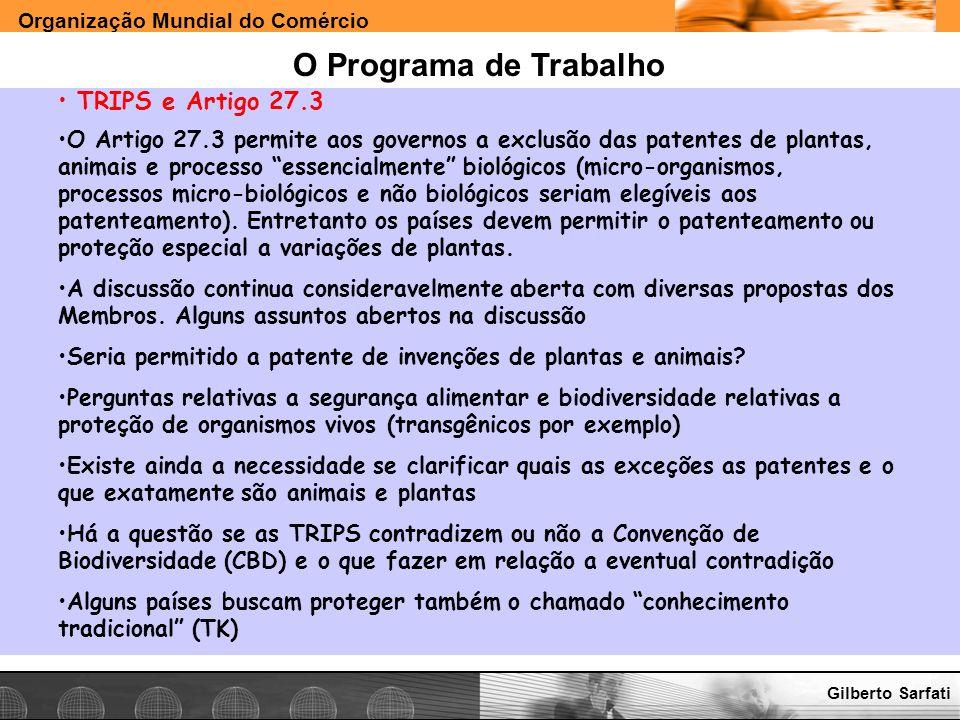 O Programa de Trabalho TRIPS e Artigo 27.3