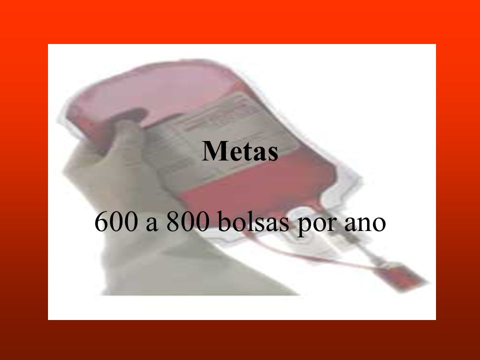 Metas 600 a 800 bolsas por ano