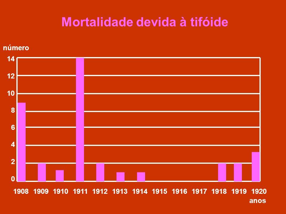 Mortalidade devida à tifóide