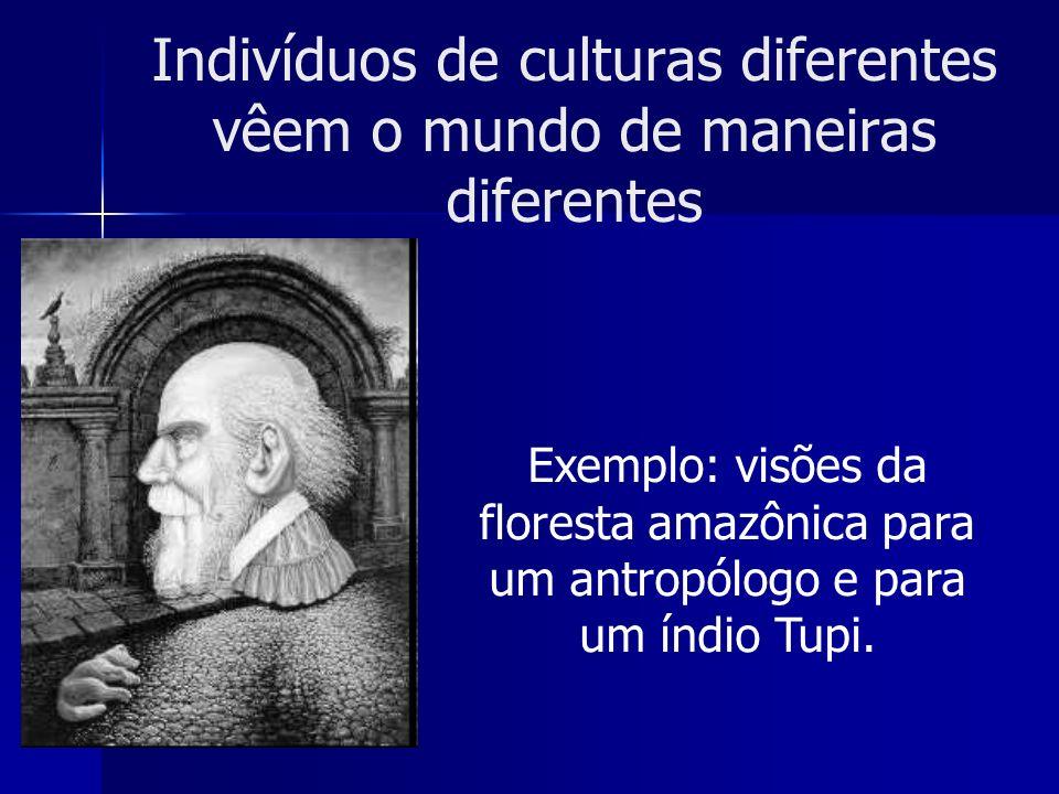 Indivíduos de culturas diferentes vêem o mundo de maneiras diferentes