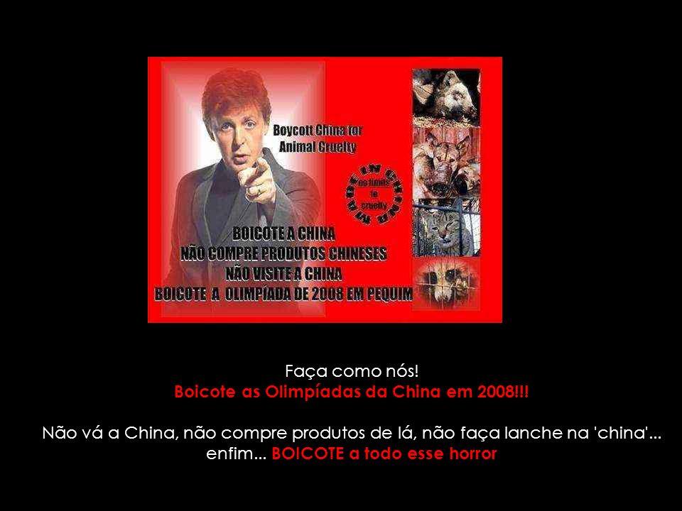 Boicote as Olimpíadas da China em 2008!!!