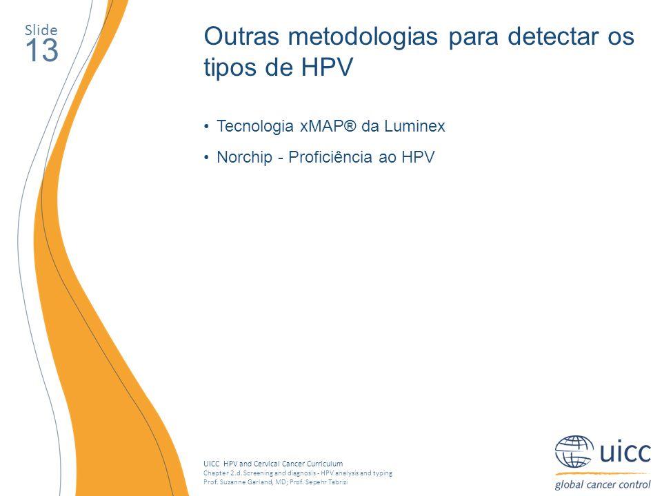 13 Outras metodologias para detectar os tipos de HPV Slide
