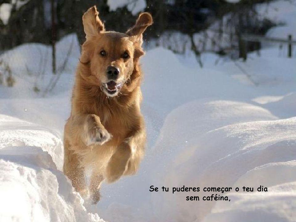 Se tu puderes começar o teu dia sem caféina,