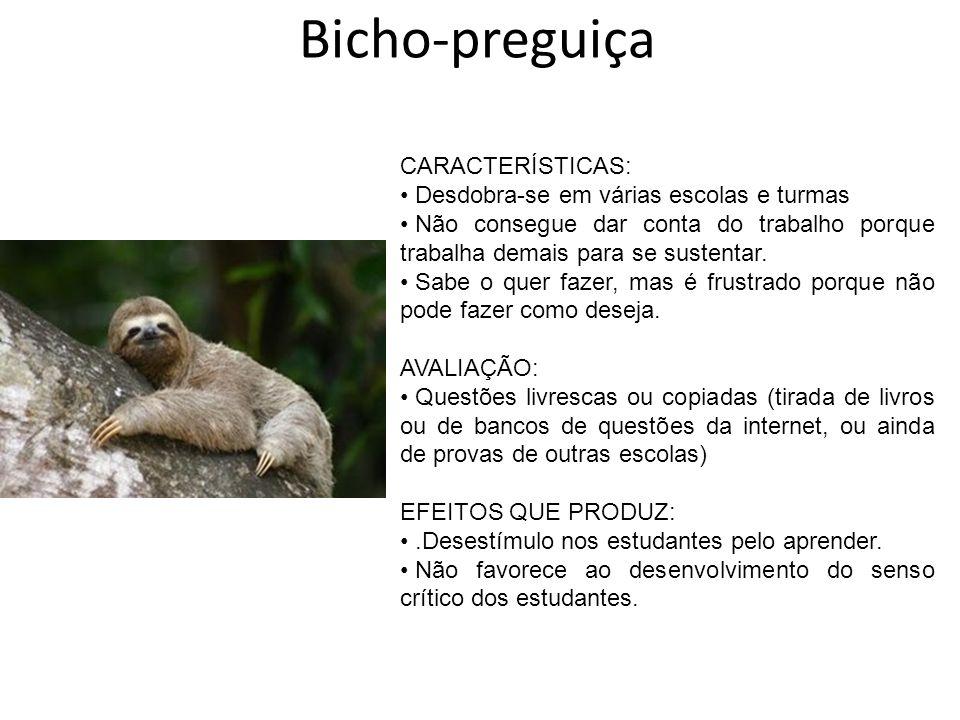 Bicho-preguiça CARACTERÍSTICAS: Desdobra-se em várias escolas e turmas