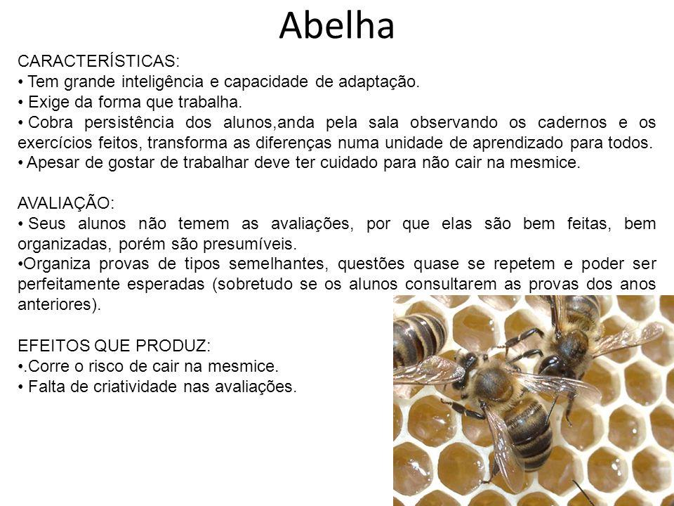 Abelha CARACTERÍSTICAS: