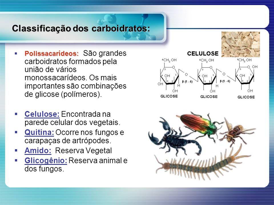 Classificação dos carboidratos: