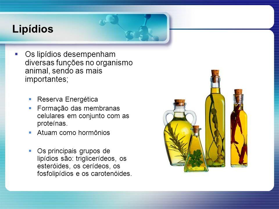 Lipídios Os lipídios desempenham diversas funções no organismo animal, sendo as mais importantes; Reserva Energética.