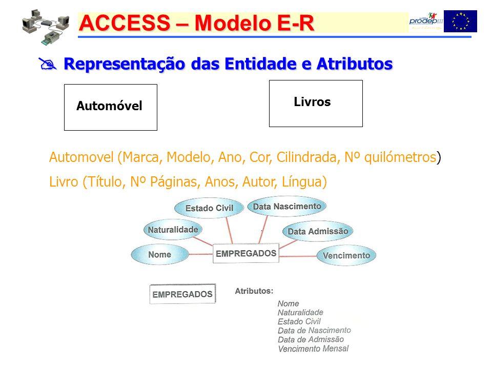  Representação das Entidade e Atributos