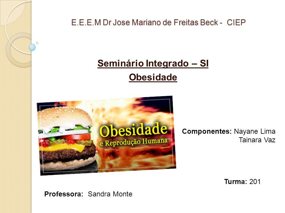 E.E.E.M Dr Jose Mariano de Freitas Beck - CIEP